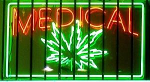 v serbii mogut legalizovat marihuanu В Сербии могут легализовать марихуану
