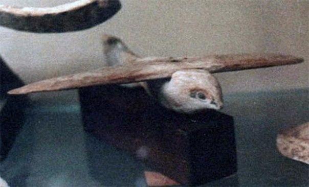 nerazgadannaya zagadka sakkarskoi pticy Неразгаданная загадка «Саккарской птицы»