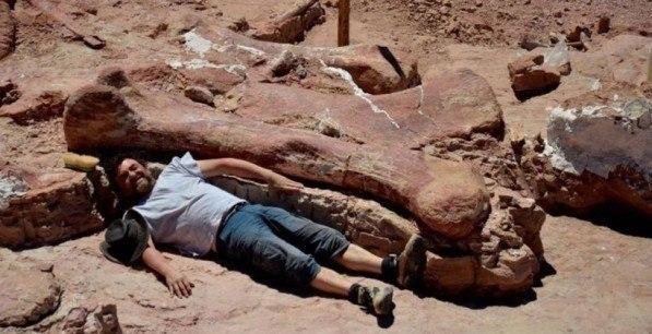 paleontologi obnarujili ostanki samyh bolshih dinozavrov Палеонтологи обнаружили останки самых больших динозавров