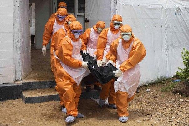 5 chto ebola budet v rossii v noyabre «5%, что Эбола будет в России в ноябре»