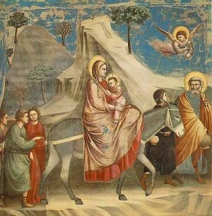 v egipte provedut po puti svyatogo semeistva В Египте проведут по пути Святого семейства