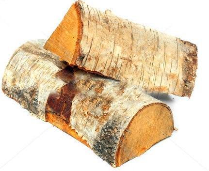 kak goryat raznye porody derevev Как горят разные породы деревьев