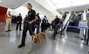 passajiry reisa vena stambul sdali v bagaj pulemet Пассажиры рейса Вена — Стамбул сдали в багаж пулемет