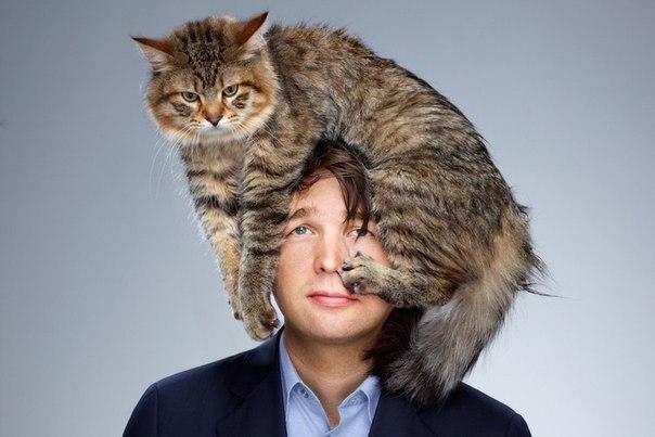 pochemu koshka lojitsya na bolnoe mesto cheloveka Почему кошка ложится на больное место человека?