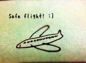 nazvana samaya bezopasnaya aviakompaniya evropy Названа самая безопасная авиакомпания Европы
