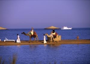 islamisty ugrojayut teraktami turistam v egipte Исламисты угрожают терактами туристам в Египте