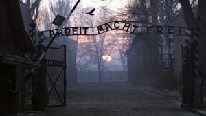 v estonii otkrylas yumoristicheskaya vystavka o holokoste В Эстонии открылась юмористическая выставка о Холокосте