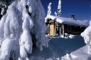 v finlyandiyu vernulas zima В Финляндию вернулась зима