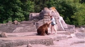 mujchina napal na medvedya v zooparke varshavy Мужчина напал на медведя в зоопарке Варшавы