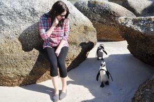 poplavat s pingvinami predlagaet zoopark turina Поплавать с пингвинами предлагает зоопарк Турина