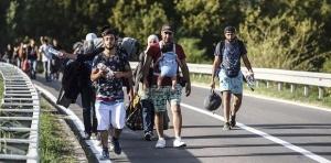 migranty ne meshayut otdyhu turistov v horvatii Мигранты не мешают отдыху туристов в Хорватии
