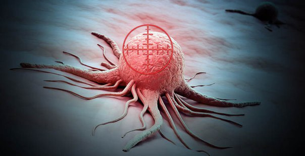 pervyi virusnyi preparat ubivayushii rakovye kletki oficialno odobren k primeneniyu Первый вирусный препарат, убивающий раковые клетки, официально одобрен к применению