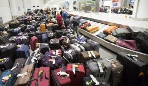o poryadke polucheniya pribyvshego iz egipta bagaja О порядке получения прибывшего из Египта багажа
