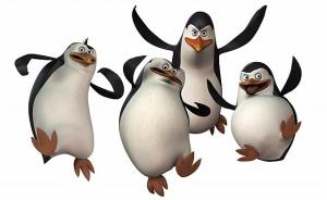 pingviny pytalis sbejat iz zooparka v danii Пингвины пытались сбежать из зоопарка в Дании