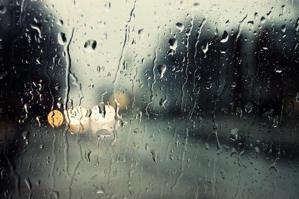 20 korotkih lyubopytnyh faktov o dojde 20 коротких любопытных фактов о дожде