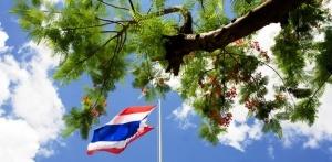 tailand mojet vvesti sbor za vezd v stranu Таиланд может ввести сбор за въезд в страну