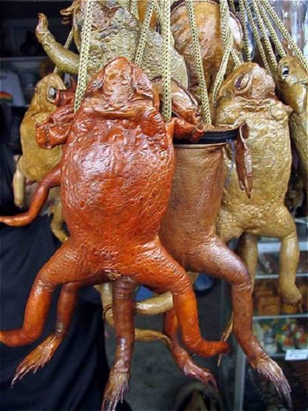 damskie sumochki kotorye nas udivili 6 Дамские сумочки, которые нас удивили