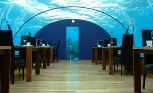 podvodnyi restoran poyavilsya v indii Подводный ресторан появился в Индии