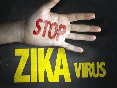 kurorty dominikany ne zatronuty virusom zika Курорты Доминиканы не затронуты вирусом Зика