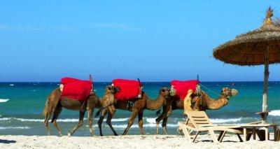 tunis idet v ataku 8 Тунис идет в атаку