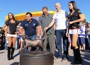 pamyatnik projorlivoi koshke otkryli vo vladivostoke Памятник прожорливой кошке открыли во Владивостоке