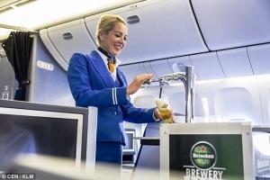 niderlandskii aviaperevozchik predlagaet pivo na bortu samoleta Нидерландский авиаперевозчик предлагает пиво на борту самолета