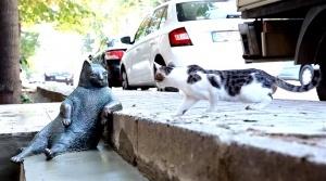 v stambule otkryli pamyatnik lenivomu kotu tombili В Стамбуле открыли памятник ленивому коту Томбили