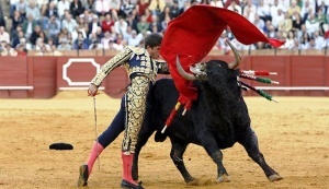 kataloniya snyala zapret na korridu Каталония сняла запрет на корриду