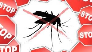 tailand predupredil ob opasnosti malyarii Таиланд предупредил об опасности малярии