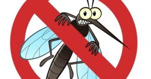 lihoradka chikungunya rasprostranyaetsya v populyarnyh u rossiyan stranah Лихорадка чикунгунья распространяется в популярных у россиян странах