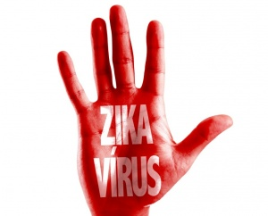 tailand i vetnam v chisle stran gde zafiksirovana lihoradka zika Таиланд и Вьетнам — в числе стран, где зафиксирована лихорадка Зика