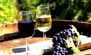 krym planiruet razvivat vinnyi turizm Крым планирует развивать винный туризм