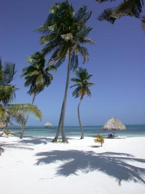 TripAdvisor sostavil reiting luchshih ostrovov mira TripAdvisor составил рейтинг лучших островов мира