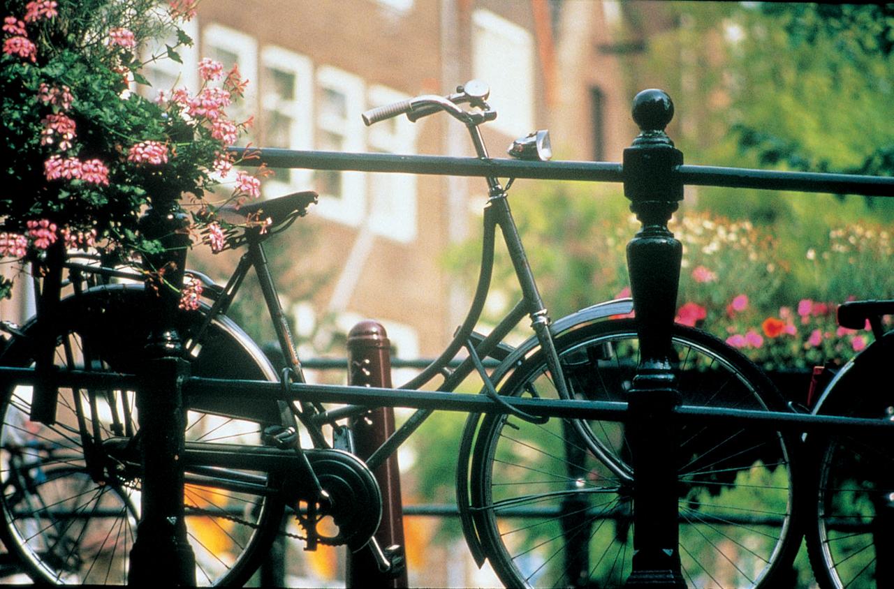 god yubileev v amsterdame stanet otlichnym povodom dlya prazdnikov Год юбилеев в Амстердаме станет отличным поводом для праздников