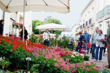 nachalo leta v italii vstretyat prazdnikom cvetov Начало лета в Италии встретят праздником цветов