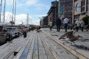 Осло возглавил список самых дорогих городов в мире по версии TripAdvisor