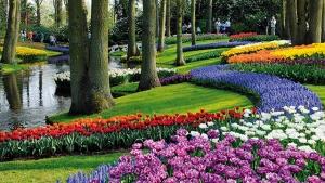 park cvetov kekenhof jdet posetitelei Парк цветов Кекенхоф ждет посетителей