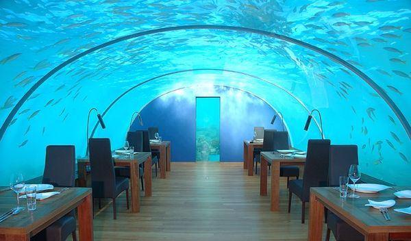 podvodnyi restoran na maldivah sdelaet vash ujin nezabyvaemym Подводный ресторан на Мальдивах сделает ваш ужин незабываемым