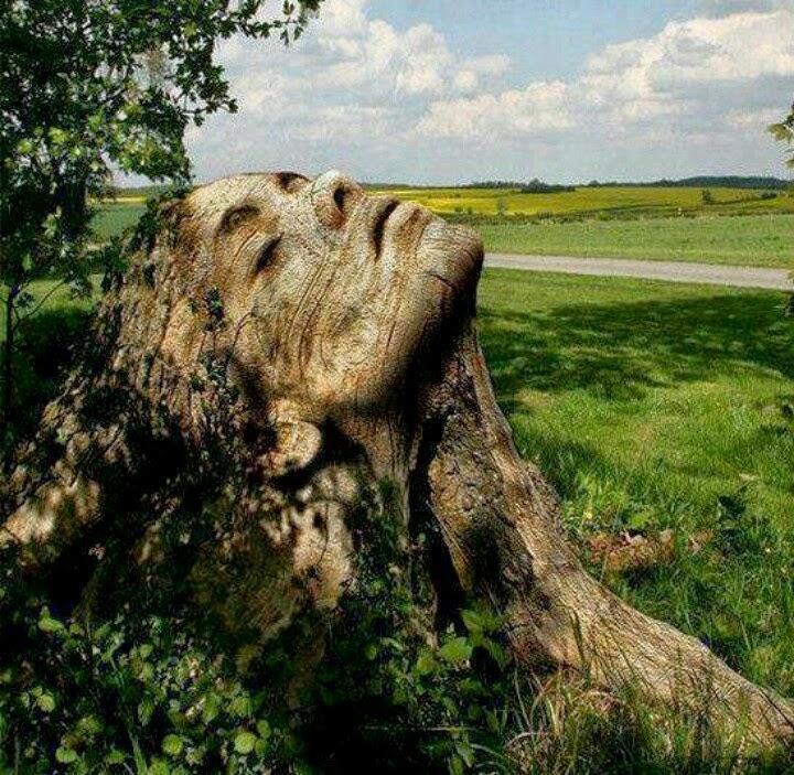 poslednie privety so vsego sveta neobychnaya fotopodborka 4 Последние приветы со всего света: необычная фотоподборка