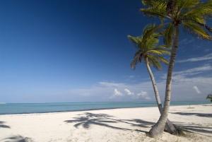 potok rossiiskii turistov v dominikanu vyros na 21 procent Поток российский туристов в Доминикану вырос на 21 процент