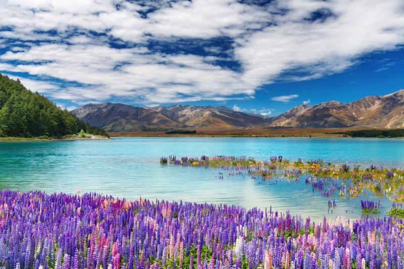 samoe jivopisnoe ozero novoi zelandii Самое живописное озеро Новой Зеландии