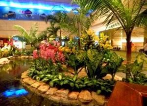 singapurskii aeroport — luchshii v mire Сингапурский аэропорт — лучший в мире