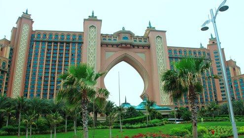 v dubae otkryt samyi bolshoi v mire park cvetov В Дубае открыт самый большой в мире парк цветов