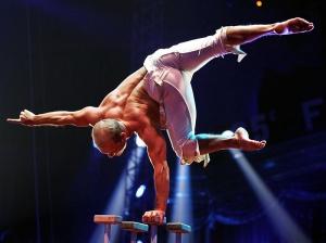 v monte karlo proidet mejdunarodnyi festival cirkovogo iskusstva В Монте Карло пройдет международный фестиваль циркового искусства