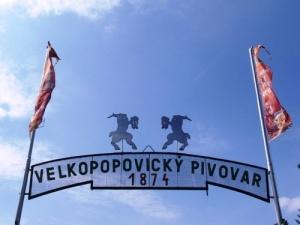 В Москве откроется музей Велке Поповице