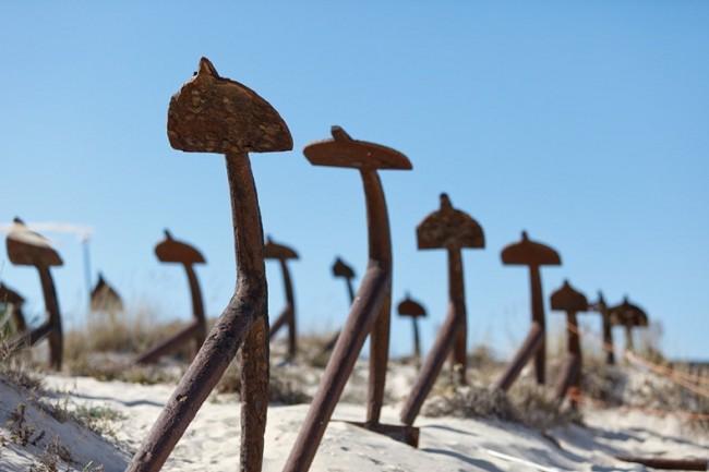 v portugalii mojno uvidet kladbishe yakorei В Португалии можно увидеть кладбище якорей