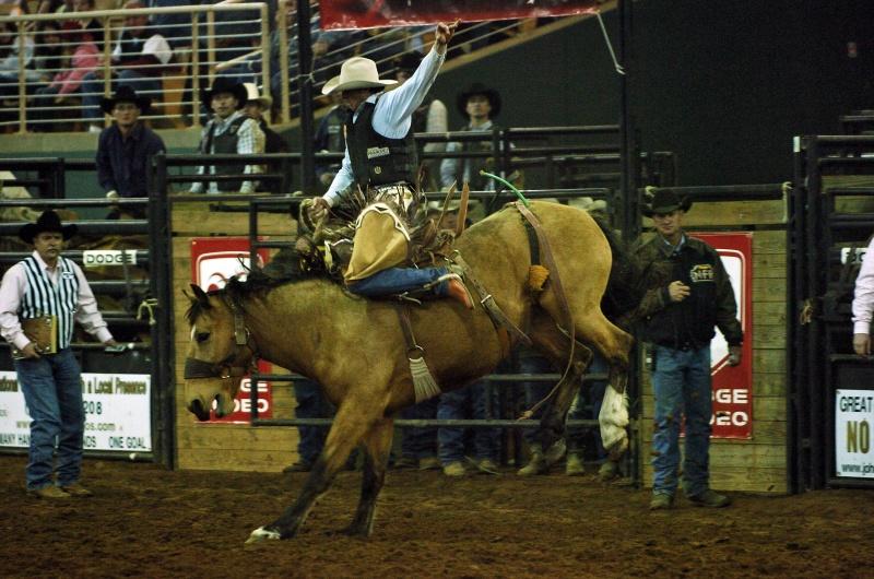 vo floride proidet znamenitoe rodeo Silver Spurs Во Флориде пройдет знаменитое родео Silver Spurs