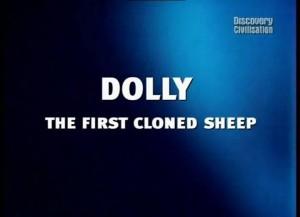 discoverydolly 300x217 Долли первая клонированная овца (Dolly the First Clone Sheep)