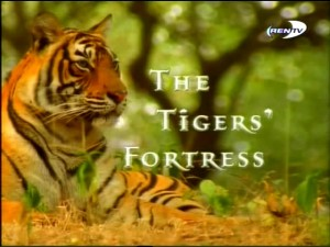 bbcthe tigers fortress 300x225 BBC. Страна тигров (The Tigers Fortress)
