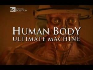 discoveryhuman body 300x225 Discovery. Наше тело   уникальная машина (Human Body   Ultimate Machine) 4 серии